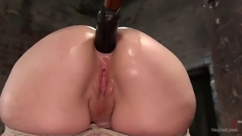 in the long run vast treasure of slave surrogate paige is trained by get good at