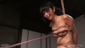 Firnly bound Oriental GF Marica Hase had very difficult BDSM site along with black man