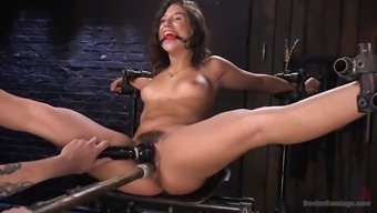 fucked over mad immobilizes succulent abella danger and anguish her hirsuite clit