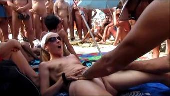 Severe branlage delaware chatte sur une plage publique