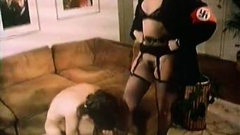 Serena, Vanessa del Rio, Samantha Fox in popular pornography online video media