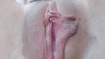 Hirsuite moist pussy closeup