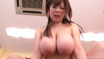 A stout Japanese girl gets her furry twat hammered and spunk in her your mouth