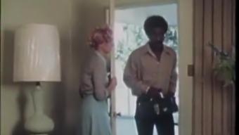 Early 70's Homemaker Fantasy