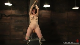 Very short Haired Babe Carries out A BDSM Scene Helped By Equipment